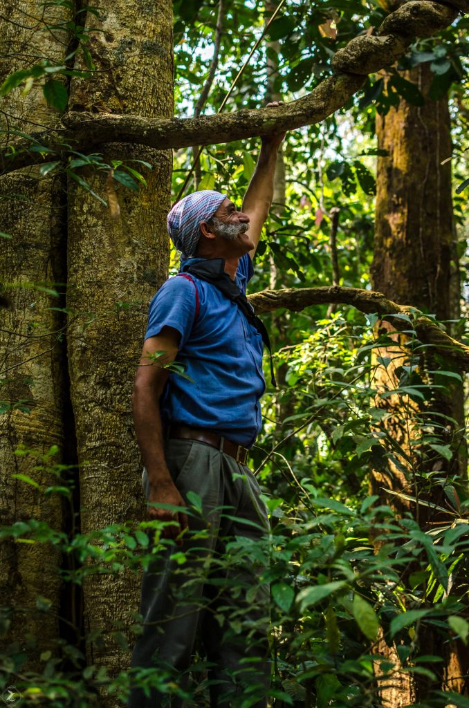 Coffee estate owner and protector of the forest - Kodagu Model Forest