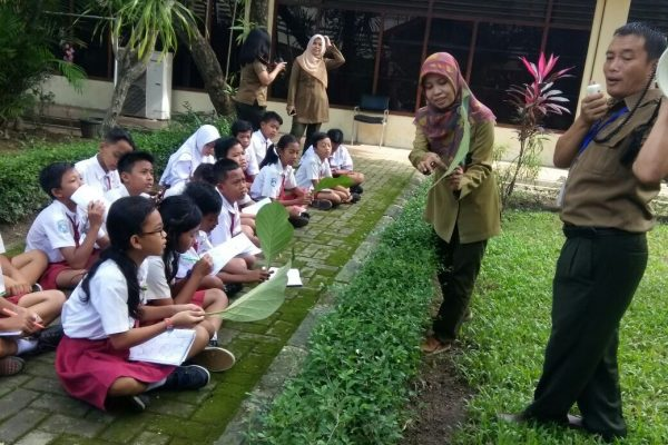 Environmental education activities