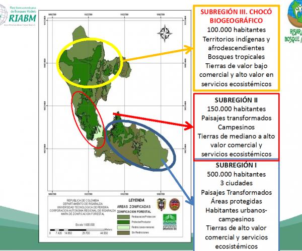 Risaralda Map - subregions
