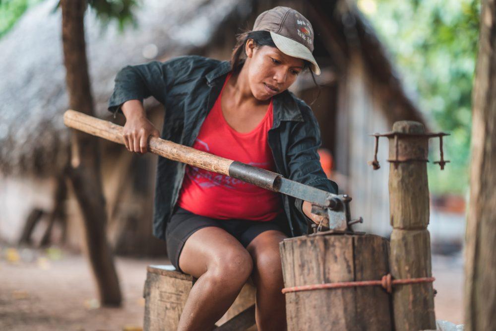 Image credit: Daniel Coimbra, Chiquitano Model Forest, Bolivia