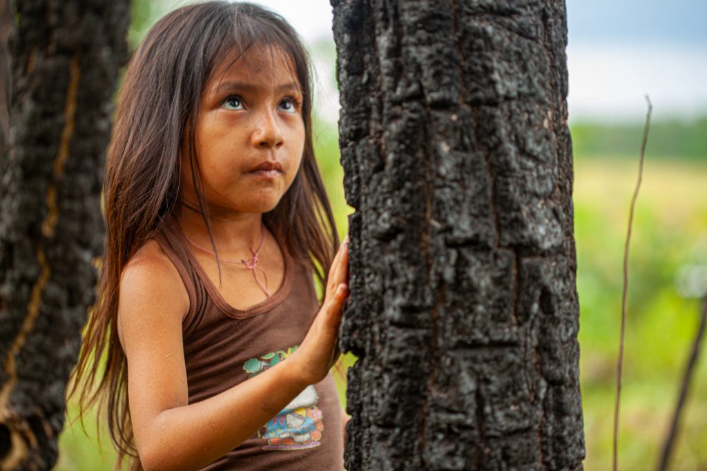 Girl assesses 2019 forest fire damage to a tree within the Chiquitano Model Forest, Bolivia. ©Fundacion para la Conservación del Bosque Chiquitano